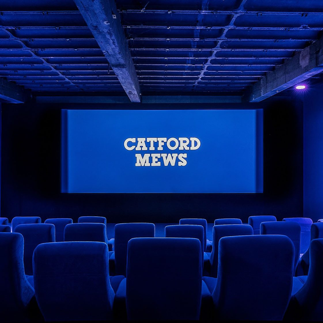 Catford Mews Cinema Auditorium with a blue overlay